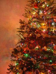 Christmas Tree Fireproof Recipes